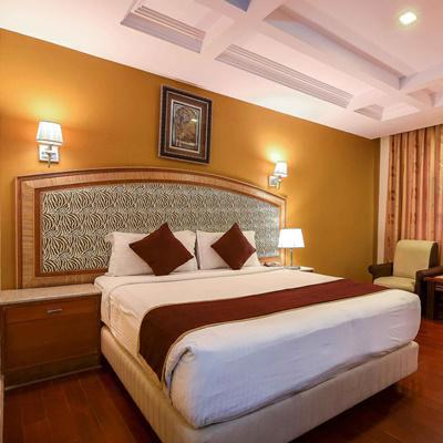 Hotel Dew Drops (Golden Metro Hotel) in Seshadripuram